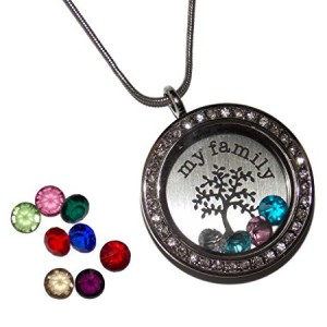 Floating Locket Birthstone Kit | Shop jewelry making and beading supplies, tools & findings for DIY jewelry making and crafts. #jewelrymaking #diyjewelry #jewelrycrafts #jewelrysupplies #beading #affiliate #ad