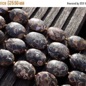 Shop Agate Bead Shapes! Turritella agate 12-16mm oval beads (ETB00339) | Natural genuine other-shape Agate beads for beading and jewelry making.  #jewelry #beads #beadedjewelry #diyjewelry #jewelrymaking #beadstore #beading #affiliate #ad