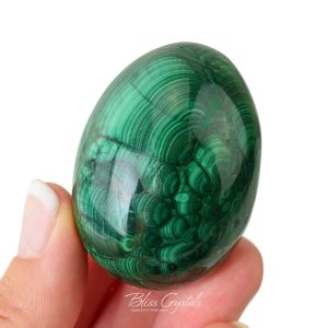 125 Gm Malachite Egg Polished Sphere W Stand Healing Crystal And Stone Collector Display Protection #me23