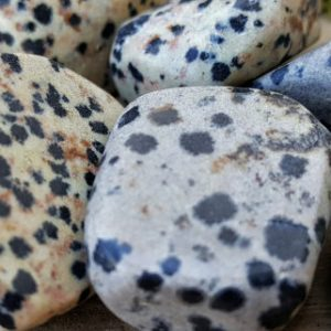 Shop Jasper Shapes! Dalmatian Jasper Crystal Tumbled Stone –  Pocket Palm Stone 129 | Natural genuine stones & crystals in various shapes & sizes. Buy raw cut, tumbled, or polished gemstones for making jewelry or crystal healing energy vibration raising reiki stones. #crystals #gemstones #crystalhealing #crystalsandgemstones #energyhealing #affiliate #ad