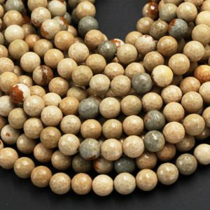 "Shop Jasper Faceted Beads! Natural Cripple Creek Jasper 8mm 10mm Faceted Round Beads High Polish Faceted Sphere Beads Earthy Beige Brown Teal Stone Full 15.5"" Strand 