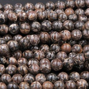 "Shop Agate Beads! Natural Turritella Agate Fossil Round Beads 4mm 6mm  8mm 10mm Round Beads Genuine Real Dark Brown Black Fossil From Wyoming 15.5"" Strand 