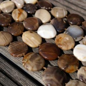 Shop Petrified Wood Beads! Wood Opalite / Petrified Wood 17-23mm Freeform Beads (etb00540) | Natural genuine other-shape Petrified Wood beads for beading and jewelry making.  #jewelry #beads #beadedjewelry #diyjewelry #jewelrymaking #beadstore #beading #affiliate #ad