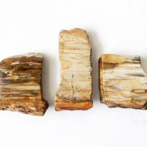 Shop Petrified Wood Stones & Crystals! Petrified Wood Mini Slab Set – 3pc Set, Crystal Healing, Stone Of Transformation, Pocket Crystal, Grounding Crystal | Natural genuine stones & crystals in various shapes & sizes. Buy raw cut, tumbled, or polished gemstones for making jewelry or crystal healing energy vibration raising reiki stones. #crystals #gemstones #crystalhealing #crystalsandgemstones #energyhealing #affiliate #ad