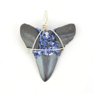 Shop Sodalite Necklaces! Megalodon Shark Tooth & Sodalite Necklace | Natural genuine Sodalite necklaces. Buy crystal jewelry, handmade handcrafted artisan jewelry for women.  Unique handmade gift ideas. #jewelry #beadednecklaces #beadedjewelry #gift #shopping #handmadejewelry #fashion #style #product #necklaces #affiliate #ad