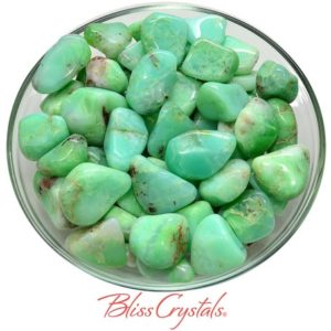 1 CHRYSOPRASE Tumbled Stone Healing Crystal and Stone for Relationship Healing #CT41 | Natural genuine stones & crystals in various shapes & sizes. Buy raw cut, tumbled, or polished gemstones for making jewelry or crystal healing energy vibration raising reiki stones. #crystals #gemstones #crystalhealing #crystalsandgemstones #energyhealing #affiliate #ad