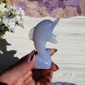 Shop Blue Chalcedony Stones & Crystals! Blue Chalcedony Dolphin Carving, Crystal Figurine for Crystal Grids or Decor | Natural genuine stones & crystals in various shapes & sizes. Buy raw cut, tumbled, or polished gemstones for making jewelry or crystal healing energy vibration raising reiki stones. #crystals #gemstones #crystalhealing #crystalsandgemstones #energyhealing #affiliate #ad