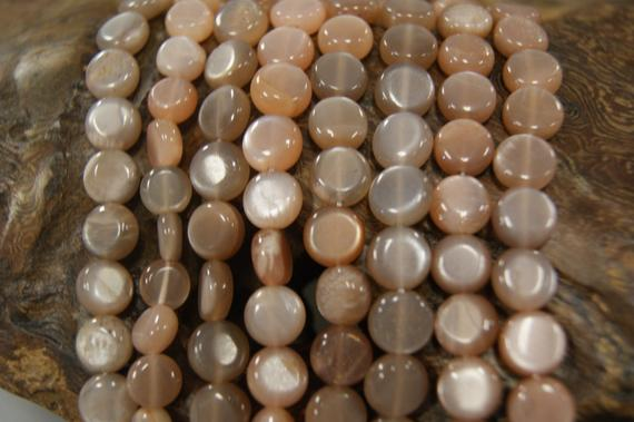 Sunstone 8-9x3mm Flat Coin  Gemstone Beads -15.5 Inch Strand