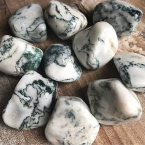 Shop Tumbled Agate Crystals & Pocket Stones! Tree Agate Tumbled Crystals | Natural genuine stones & crystals in various shapes & sizes. Buy raw cut, tumbled, or polished gemstones for making jewelry or crystal healing energy vibration raising reiki stones. #crystals #gemstones #crystalhealing #crystalsandgemstones #energyhealing #affiliate #ad