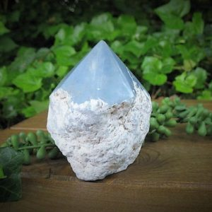 Shop Angelite Stones & Crystals! Large Angelite Point Crystal, Angel Stone, Anhydrite, apm1   Natural genuine stones & crystals in various shapes & sizes. Buy raw cut, tumbled, or polished gemstones for making jewelry or crystal healing energy vibration raising reiki stones. #crystals #gemstones #crystalhealing #crystalsandgemstones #energyhealing #affiliate #ad