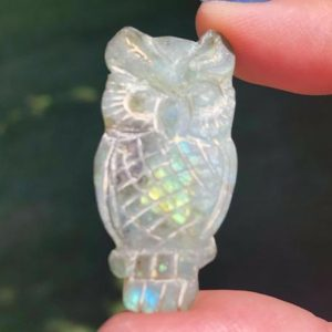 "Shop Labradorite Cabochons! 1.6"" Labradorite Owl Cabochon  Owl Carving   Flashy Gemstone Crystal Cab #5 