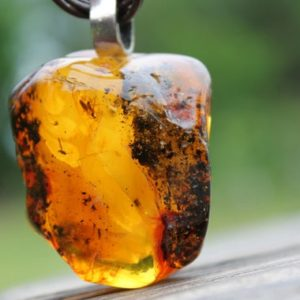 Shop Amber Pendants! Amber with Inclusion Insect Pendant Fossil  Jewelry Rough Stone Prehistoric Mens Necklace | Natural genuine Amber pendants. Buy handcrafted artisan men's jewelry, gifts for men.  Unique handmade mens fashion accessories. #jewelry #beadedpendants #beadedjewelry #shopping #gift #handmadejewelry #pendants #affiliate #ad