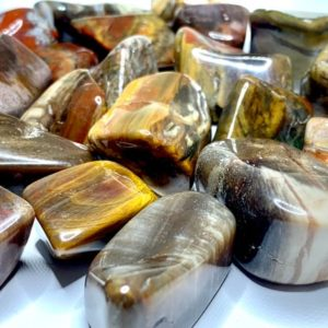 Shop Petrified Wood Stones & Crystals! Petrified Wood Tumbled Stones | Natural genuine stones & crystals in various shapes & sizes. Buy raw cut, tumbled, or polished gemstones for making jewelry or crystal healing energy vibration raising reiki stones. #crystals #gemstones #crystalhealing #crystalsandgemstones #energyhealing #affiliate #ad