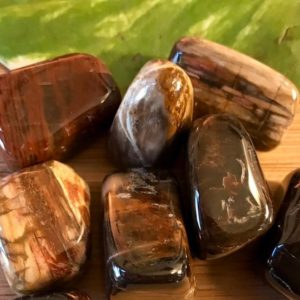 Tumbled Petrified Wood  Stones Set with Gift Bag and Note | Natural genuine stones & crystals in various shapes & sizes. Buy raw cut, tumbled, or polished gemstones for making jewelry or crystal healing energy vibration raising reiki stones. #crystals #gemstones #crystalhealing #crystalsandgemstones #energyhealing #affiliate #ad