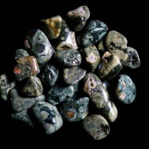Shop Rainforest Jasper Stones & Crystals! Rainforest Rhyolite Tumbled | Natural genuine stones & crystals in various shapes & sizes. Buy raw cut, tumbled, or polished gemstones for making jewelry or crystal healing energy vibration raising reiki stones. #crystals #gemstones #crystalhealing #crystalsandgemstones #energyhealing #affiliate #ad