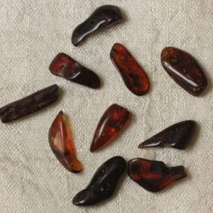 Shop Amber Bead Shapes! Amber – 14-16 mm beads – 10pc 4558550035554 bag beads | Natural genuine other-shape Amber beads for beading and jewelry making.  #jewelry #beads #beadedjewelry #diyjewelry #jewelrymaking #beadstore #beading #affiliate #ad