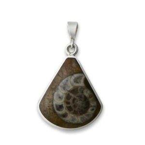 Shop Jet Pendants! Whitby Jet & Ammonite Fossil Double-Sided Silver Pendant – Handmade in Sheffield   Natural genuine Jet pendants. Buy crystal jewelry, handmade handcrafted artisan jewelry for women.  Unique handmade gift ideas. #jewelry #beadedpendants #beadedjewelry #gift #shopping #handmadejewelry #fashion #style #product #pendants #affiliate #ad