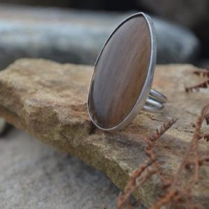 Shop Petrified Wood Rings! Petrified Wood Ring | Natural genuine Petrified Wood rings, simple unique handcrafted gemstone rings. #rings #jewelry #shopping #gift #handmade #fashion #style #affiliate #ad