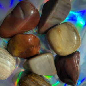Shop Tumbled Petrified Wood Crystals & Pocket Stones! Petrified wood tumble stone. Medium.   Natural genuine stones & crystals in various shapes & sizes. Buy raw cut, tumbled, or polished gemstones for making jewelry or crystal healing energy vibration raising reiki stones. #crystals #gemstones #crystalhealing #crystalsandgemstones #energyhealing #affiliate #ad