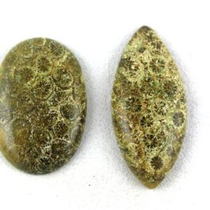 Shop Ocean Jasper Cabochons! 2 Pcs Natural Ocean Jasper Cabochon,Designer Cabochon,Jasper Cabochon,Gemstone Cabochon,Mix Shape,Natural Jasper,Natural Stone,70 Carat,Cabs   Natural genuine stones & crystals in various shapes & sizes. Buy raw cut, tumbled, or polished gemstones for making jewelry or crystal healing energy vibration raising reiki stones. #crystals #gemstones #crystalhealing #crystalsandgemstones #energyhealing #affiliate #ad