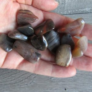 Shop Petrified Wood Stones & Crystals! Petrified Wood Small Tumbled Stone T116 | Natural genuine stones & crystals in various shapes & sizes. Buy raw cut, tumbled, or polished gemstones for making jewelry or crystal healing energy vibration raising reiki stones. #crystals #gemstones #crystalhealing #crystalsandgemstones #energyhealing #affiliate #ad
