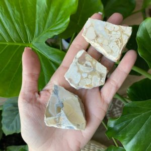 Shop Raw & Rough Jasper Stones! Half polished cobra jasper, rough cobra jasper, appreciation | Natural genuine stones & crystals in various shapes & sizes. Buy raw cut, tumbled, or polished gemstones for making jewelry or crystal healing energy vibration raising reiki stones. #crystals #gemstones #crystalhealing #crystalsandgemstones #energyhealing #affiliate #ad