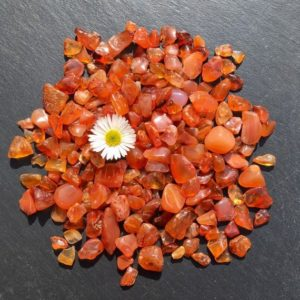 Shop Raw & Rough Carnelian Stones! Carnelian – Undrilled Loose Tumbled Gemstone Crystal Chips – 50g – 5-10mm Tiny Small Mini Stones – Jewelry Jewellery Gem Chip Beads   Natural genuine stones & crystals in various shapes & sizes. Buy raw cut, tumbled, or polished gemstones for making jewelry or crystal healing energy vibration raising reiki stones. #crystals #gemstones #crystalhealing #crystalsandgemstones #energyhealing #affiliate #ad