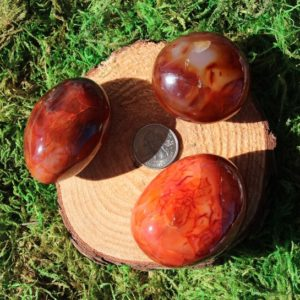 Shop Carnelian Shapes! Carnelian Palms A-c | Natural genuine stones & crystals in various shapes & sizes. Buy raw cut, tumbled, or polished gemstones for making jewelry or crystal healing energy vibration raising reiki stones. #crystals #gemstones #crystalhealing #crystalsandgemstones #energyhealing #affiliate #ad