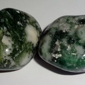 Shop Tumbled Agate Crystals & Pocket Stones! Tree Agate Natural Healing Crystal Gemstone tumbled & hand polished Stones 2pc set   Natural genuine stones & crystals in various shapes & sizes. Buy raw cut, tumbled, or polished gemstones for making jewelry or crystal healing energy vibration raising reiki stones. #crystals #gemstones #crystalhealing #crystalsandgemstones #energyhealing #affiliate #ad