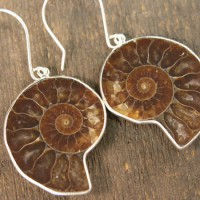 Ammonite Earrings Project